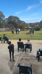 group obedience class in perth